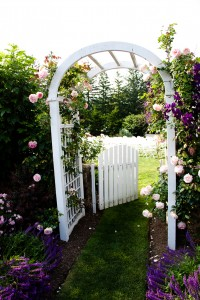 Old York Road Country Club, garden wedding, outdoor wedding