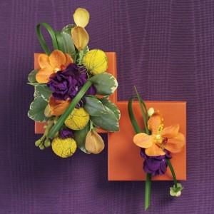 Tangerine Flowers